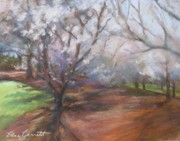 Cherry Blossoms Pastels Prints - Cherry Trees Print by Edna Garrett