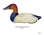 Waterfowl Paintings - Chesapeak Canvasback Decoy by Barry Louwerse