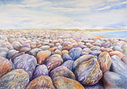 Chesil Beach Prints - Chesil Beach Print by Merv Scoble