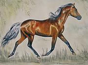Frances Gillotti - Chestnut Horse Painting