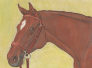Thoroughbred Mixed Media - Chestnut Hunter by Elizabeth Farrell