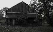Anna Villarreal Garbis Prints - Chets Barn Print by Anna Villarreal Garbis