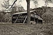Bales Framed Prints - Chew Mail Pouch sepia Framed Print by Steve Harrington