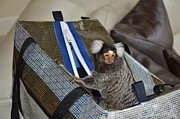 Chewy The Marmoset Digital Art - Chewy the Marmoset going Fishing by Barry R Jones Jr