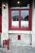 Catherine Window Posters - Chez Catherine Poster by Dyanne Wilson