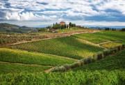 Chianti Landscape Print by Eggers   Photography