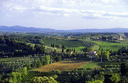 Chianti Photo Framed Prints - Chianti Region in Italy Framed Print by Gregory Ochocki and Photo Researchers