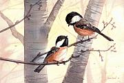Chickadee Originals - Chic Chat by Sean Seal