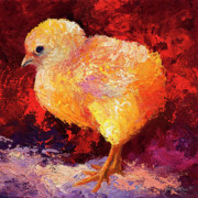 Barnyard Animal Paintings - Chic Flci III by Marion Rose