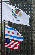 Chicago Flags Print by Ann Horn
