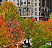 Chicago Digital Art Metal Prints - Chicago in Autumn Metal Print by Mary Machare