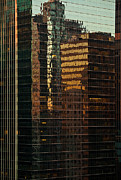 Downtown Prints - Chicago Reflected Print by Steve Gadomski