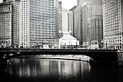 Chicago River Framed Prints - Chicago River Architecture Framed Print by Paul Velgos