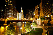 Architecture Metal Prints - Chicago River Buildings at Night Metal Print by Paul Velgos