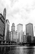 Business Art - Chicago River II by Drew Castelhano