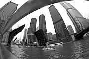 Trump Tower Prints - Chicago Sailboats heading to Harbor Print by Sven Brogren