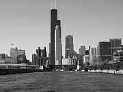 Chicago Black White Posters - Chicago Skyline Poster by Shera Hastings