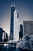 Chicago Prints - Chicago Skyline with Sears-Willis Tower Print by Paul Velgos