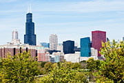 With Photos - Chicago Skyline with Trees by Paul Velgos
