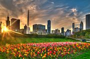 Jeff Lewis - Chicago Spring