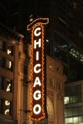 Street Sign Posters - Chicago Theater at Night Poster by Lauri Novak