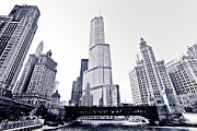 Chicago Black White Posters - Chicago Trump Tower and Wrigley Building Poster by Paul Velgos