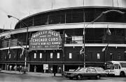 1981 Photo Framed Prints - Chicago: Wrigley Field Framed Print by Granger