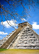 Ancient Ruins Prints - Chichen Itza and Tree Print by Chris Brannen