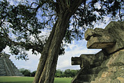 The North Prints - Chichen Itza Scene Print by Steve Winter