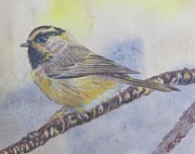 Robert Decker - Chickadee 1