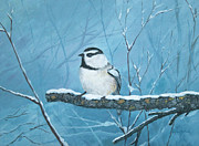 Winter Scenes Pastels Framed Prints - Chickadee Framed Print by LaReine McIlrath
