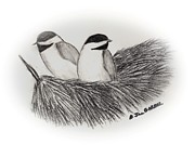 Chickadee Drawings Prints - Chickadee Print Print by A Jill Gaebel