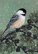 Kathleen McDermott - Chickadee Set 16 Bird 1...