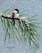 Flurries Posters - Chickadee Set 8 - Bird 1 - Snow Chickadees Poster by Kathleen McDermott