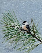 Flurries Posters - Chickadee Set 8 - Bird 2 - Snow Chickadees Poster by Kathleen McDermott