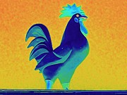 Sculpture Animal Posters - Chicken 2 Poster by Randall Weidner