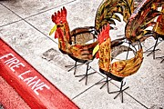 Digital Fire Pyrography Prints - Chicken Crossing Print by Ken Williams