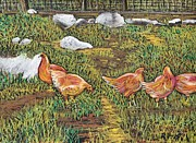 Chicken Pastels - Chickens by Reb Frost