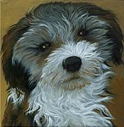 Brown White Dog Framed Prints - Chico - dog portrait oil painting Framed Print by Linda Apple