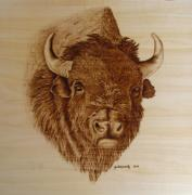 Bison Pyrography Posters - Chief Poster by Jo Schwartz