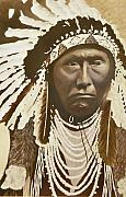 Native American Leaders Framed Prints - Chief Joseph Framed Print by Terry Honstead
