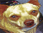 Dog Portrait Digital Art Originals - Chihuahua by Alice Ramirez