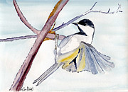 Greeting Cards Drawings Posters - Chikadee Poster by Eva Ason