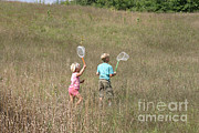Collects Photo Framed Prints - Children Collecting Insects Framed Print by Ted Kinsman