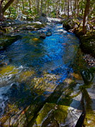 Dappled Light Photos - Childs Brook WZ 26 by George Ramos
