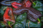 Hot Peppers Digital Art Framed Prints - Chile Ancho Framed Print by James Woody