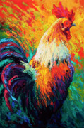 Rooster Metal Prints - Chili Pepper Metal Print by Marion Rose