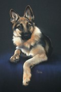 Canvas Dog Prints Prints - Chilli Print by Cynthia House