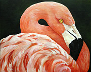 Flamingo Paintings - Chillin by Lorraine Ulen