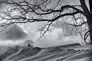Joseph Duba Metal Prints - Chilling Wind Snow Drifting  2009 Metal Print by Joseph Duba